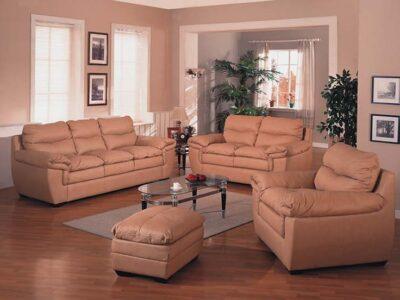 Sofa Starter Bone