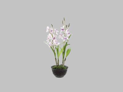 Arreglo Floral Cattleya