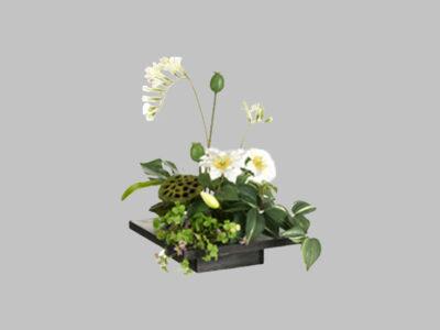 Arreglo Floral Clematis Freesia Blanco