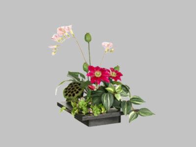 Arreglo Floral Clematis Freesia Fuchia