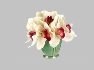 Arreglo Floral Cymbidium Orchid Crema/Fu