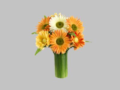 Arreglo Floral Gerbera Daisy